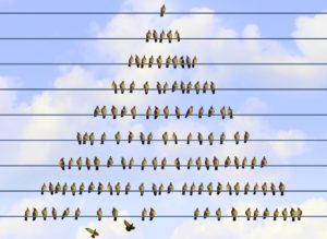 Wie flach dürfen Hierarchien sein? Führung im Rahmen von Spielräumen – so könnte die Organisationsstruktur der Zukunft aussehen.