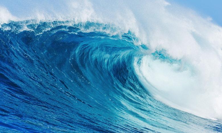 5 Sparten, die dank Corona nachhaltig digitalisiert wurden
