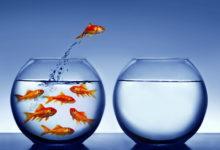 Fünf Strategien für den Aufbau digitaler Fertigkeiten